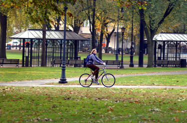 Bicyclist on the New Haven Green